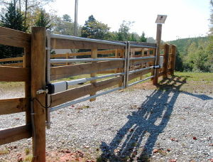 DC Swing Gate Opener, 2 Arms/Set, Suitable for 300kgs/Leaf Gates pictures & photos