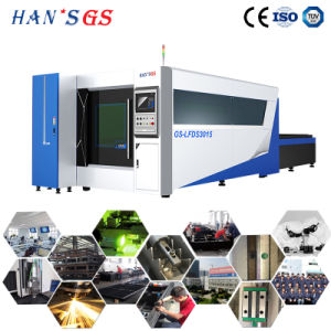 Factory Supply CNC Fiber/CO2 Laser Cut Machine for Metal Cutting pictures & photos