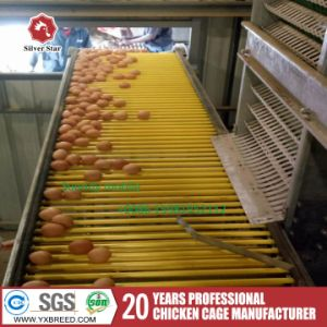 Poultry Farming Equipment A3l120 Chicken Egg Battery Cage pictures & photos