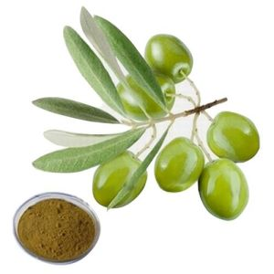 Natural Olive Leaf Extract (olea europaea) 12%-50% Oleuropein pictures & photos