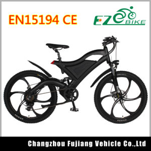 High Speed Snow Beach Mountain Electric Bike with Fenders pictures & photos