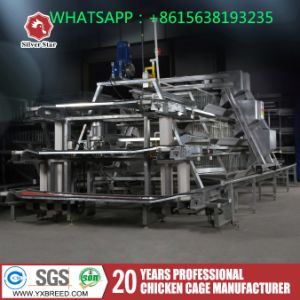 Silver Star Automatic Poultry Equipment / Brand Chicken Layer Cage pictures & photos