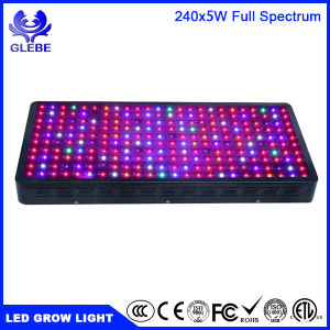 LED Grow Lights 480W Dimmable Light for Office, Home, Indoor Garden Greenhouse pictures & photos