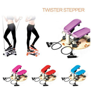 2 in 1 Mini Twister Stepper Waist Foot Aerobic Exercise Machine