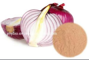 High Quality Onion Powder Extract Spiraeoside 30%, Quercetin 2%~95% pictures & photos