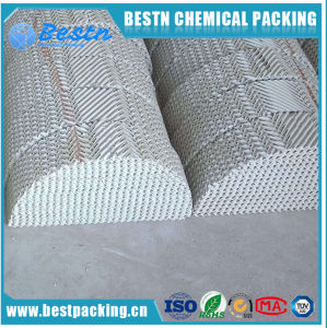Plastic Corrugated Plate Structured Packing for Industry Tower pictures & photos