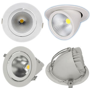 High Quality 40W Epistar COB LED Gimbal Downlight with AC100-240V pictures & photos