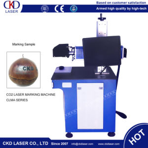 15W Laser Marking Machine for Food Pharmaceutical Packaging pictures & photos