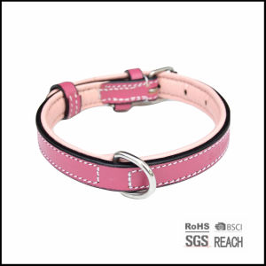 Pet Supply Products Accesories Luxury Real Leather Padded Dog Collar pictures & photos