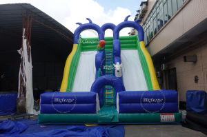 Inflatable Slide and Bouncer for Funcity pictures & photos