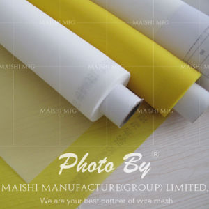 Polyester Silk Screen Printing Mesh/Bolting Cloth for Screen Printing pictures & photos