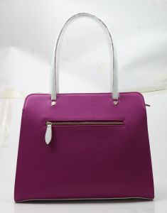 Trendy Color Shoulder Bags Designs of Womens Bags Collections pictures & photos