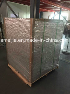 Pvf2 Coated Alumium Honeycomb Panels pictures & photos