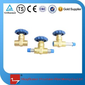 Dn10 Cryogenic Gas Cylidner Stop Valve pictures & photos