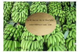 Amino Acid Chelate Ca+B Organic Fertilizer pictures & photos