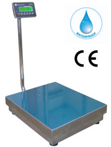 Electronic RS232 Port Weighing Scale pictures & photos