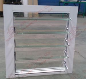 Economy Aluminium Shutter Window (BHA-BL04) pictures & photos