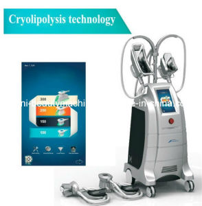 Newest Equipped with Four Working Head Cryolipolysis Liposuction Fat Dissolving Handle Beauty Slimming Machine (ETG50-4S) pictures & photos