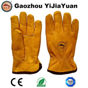 Safety Work Gloves for Driving with Thinsulate Full Lining pictures & photos