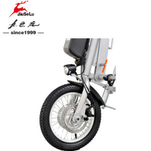 24V Lithium Battery 250W Silver Electric Wheelchair Conversion Kits (JSL028A) pictures & photos