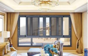Double Tempered Glass Aluminum Sliding Window with SS Screen pictures & photos