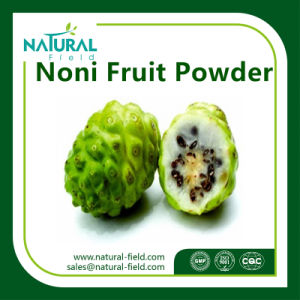 Factory Supply 100% Natural Stock Noni Fruit Extract pictures & photos