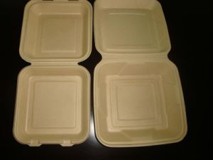 Disposable Eco Sugarcane Lunch Box pictures & photos