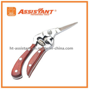 Garden Tools Grape Cutter Drop Forged Bypass Floral Shear pictures & photos