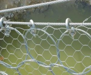 Hexagonal Wire Netting, Hexagonal Wire Mesh, Gabion Mesh pictures & photos