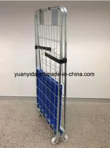 2 Sides Europe Roll Pallet Cage Containers with Plastic Pallet pictures & photos