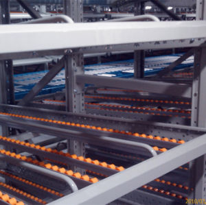 Dynamic Storage Roller Track for Carton Flow pictures & photos