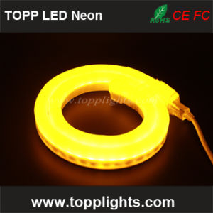 50m Spool 230V 120V 24V LED Replacement Neon Tubes pictures & photos