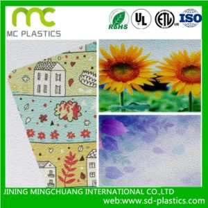 Embossing PVC Wallpaper for Mural, Poster Printing pictures & photos