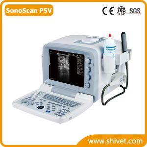 Portable Veterianry Ultrasound (SonoScan P5V) pictures & photos