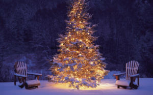 Beautiful Outdoor Hotel LED Cherry Tree LED Large Tree Lights pictures & photos