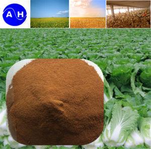 Trace Element Amino Acid Chelate Fertilizer Organic Mineral Liquid Amino Acids pictures & photos