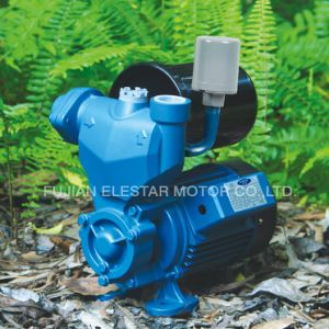 Peripheral Pump Wzb Series 0.5-1HP Clean Water Pumps pictures & photos