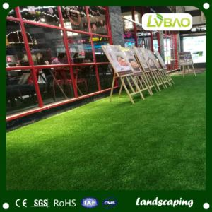 Outdoor Commercial Garden Cartoon Design Colorful Grass Carpet pictures & photos