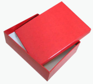 Cheap Hot Selling Professional Custom Coloring Packaging Paper Boxes (YY-B0153) pictures & photos