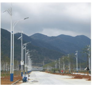 Solar Street Light (LB-WSL54)