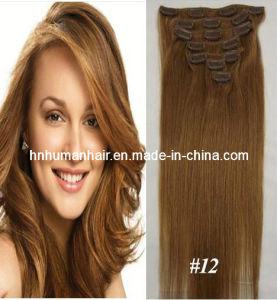 Bulk Hair (HN-C-069)