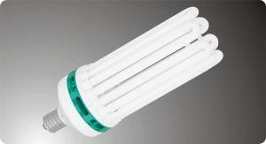 Energy Saving Lamps - 8U