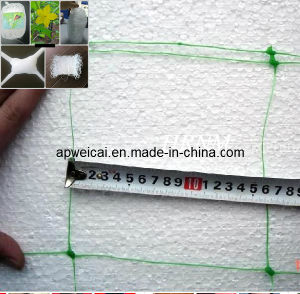 Plant Support Netting, Extruded Plastic Nets, 10cm, 15cm, 12.5cm Holes pictures & photos
