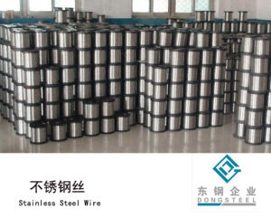 Stainlesss Steel Wire