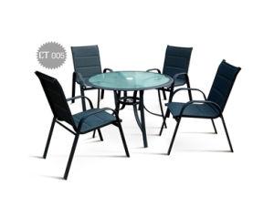 Garden Furniture (CT 005)