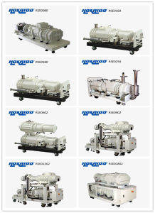 Large Pumping Capacity Vacuum Dry Screw Pump Rse902 pictures & photos
