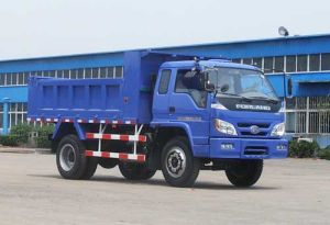 Foton 6t Rhd Dump Truck (BJ3073DCPFA-S4)