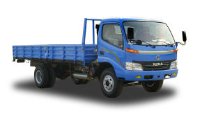 5 TON CNG TRUCK pictures & photos