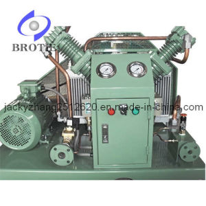 Oil-Free Carbon Dioxide Compressor (BRC-CO2) pictures & photos