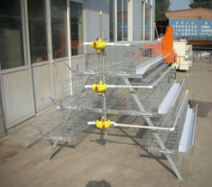 Poultry Cage for Chicken Farm Use, Poultry Farm Layer Chicken Cage Galvanized Wire Mesh Cage pictures & photos